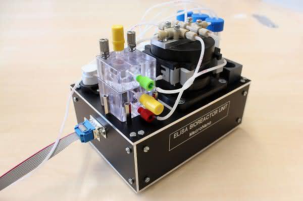 Wirk- und Giftstoffe: Effekte mit Bioreaktor analysieren
