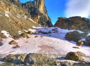 News: Schneealgen: kälteangepasste Extremophile der Polarregionen