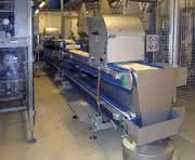 Transportbänder: Für die Lebensmittelproduktion