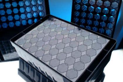 Mikrotiterplatte als Kultivierungsplattform: Protein-Produktion im Mikromaßstab