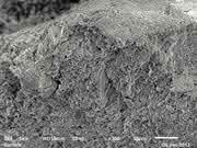 Messung mit dem Bildverarbeitungssystem PowderShape: Partikelgrößenbestimmung