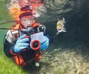 Unterwasserkameras: Unterwasserwelten