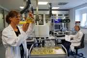 News: 13. Edelmetallforum - Analytik, Toxikologie und Umwelt