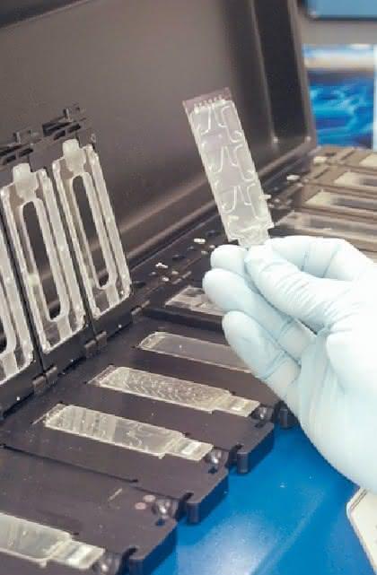 Microarrays der NimbleGen-Produktfamilie: Für große Datenmengen