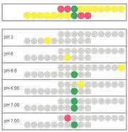 Digital-Potentiometer/-Bipotentiometer TITRIPOT: Nie wieder übertitrieren