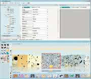 Mikroskopie: Generationswechsel  in der digitalen Bildverarbeitung