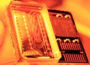 Micro-Array-Handling: Krankheiten früher erkennen