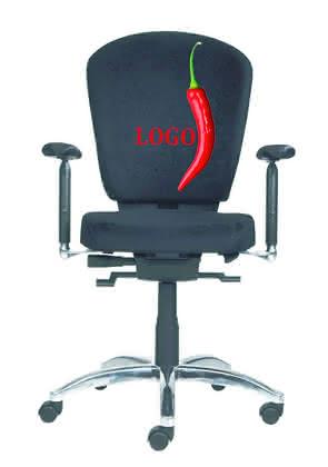 Ergonomischer Bürostuhl: Den Rücken entzücken