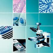Virtuelles Mikroskopie-System dotSlide: Virtuelles Präparat – reale Analyse