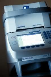 Mastercycler pro: Kissen verbessert PCR-Ergebnisse