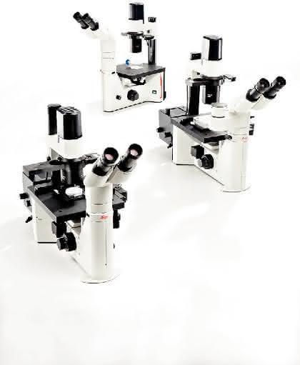 Inverse Mikroskope DM IL LED/DM IL Fluo: Inverses Mikroskop mit LED-Licht