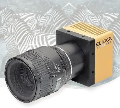 CCD-Zeilenkamera e2v ELiiXA 3V: Drei Zeilen für Geschwindigkeit