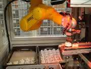 Robotik: Roboter wachsen mit ihren Aufgaben
