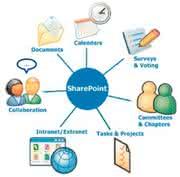 Wirtschaft + Unternehmen: Studie: Sharepoint  Server für ECM