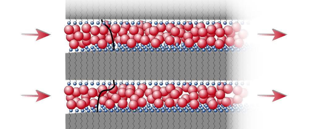 Schematische Zeichnung der Schichtstruktur aus Kunststoffschichten (grau hinterlegt; die Endgruppen der Molekülketten sind blau markiert) und dazwischenliegenden Ionen (rot).