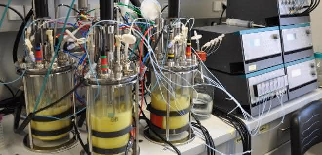 Bioreaktoren an der TU Wien