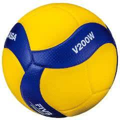 Offizieller FIVB-Volleyball