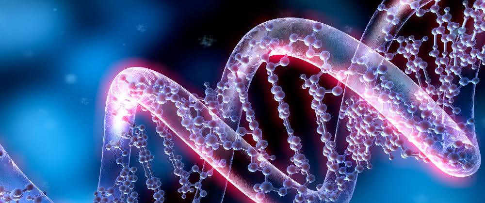 DNA-Doppelhelix