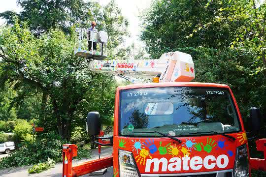 Tappi, eine Lkw-Arbeitsbühne von mateco, hilft bei der Baumpflege im Zoo