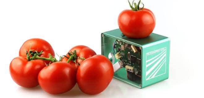 Viele Nahrungsmittel landen im Abfall, obwohl sie noch verzehrbar sind. Ein mobiler Food-Scanner soll Abhilfe schaffen.