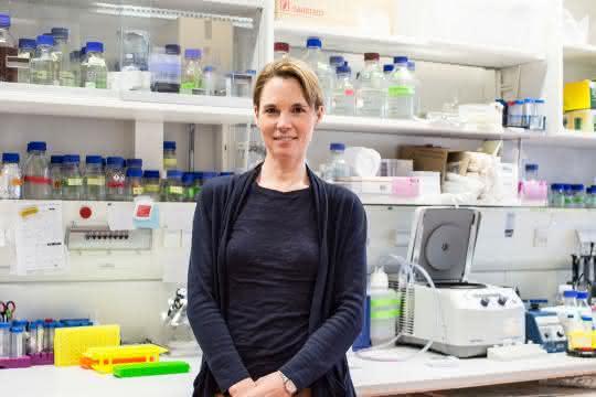 Dorothee Dormann erhält im März 2019 den Paul Ehrlich- und Ludwig Darmstaedter-Nachwuchspreis für ihre Forschung zu neurodegenerativen Erkrankungen.