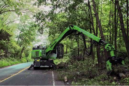 Baumpflege entlang des Highways