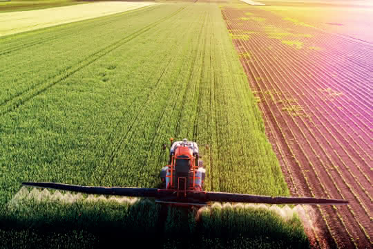 Pestizide werden auf einem Acker auf die Pflanzen gesprüht