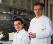 Prof. Dr. Jürgen C. Becker (rechts) mit seinem Doktoranden Kaiji Fan, der ebenfalls an der Studie beteiligt war