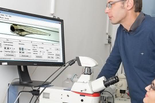 Aufnahme in Labor mit Bildschirm und VAST-Auswertung