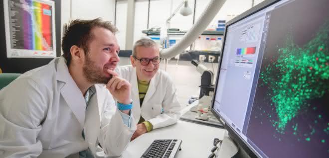 Dennis Eickelbeck (links) und Stefan Herlitze bringen Zellen zum Leuchten – mit der sogenannten Optogenetik.