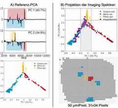 PCA von unabhängig-gemessenen MALDI-TOF-MS-Referenzspektren