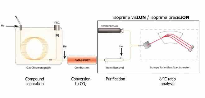 Bild 1: Verbrennungsschema eines GC-IRMS.