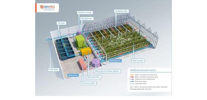 Prinzip der Aquaponik, wie es im EU-Projekt INAPRO in Waren bei den Müritzfischern umgesetzt wurde.