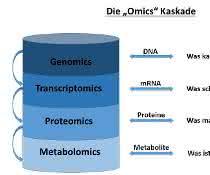 """Bild 1: """"omics""""-Kaskade, beginnend mit Genomics (Messung aller Gene), Transcriptomics (Messung der mRNA-Sequenzen), Proteomics (Detektion aller Proteine) sowie Metabolomics (Messung aller Stoffwechselprodukte)."""