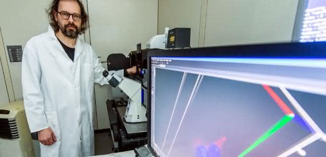 Prof. Dr. Günter Mayer vom Life & Medical Sciences Institut (LIMES) der Universität Bonn am Konfokalen Laser Scanning Mikroskop.