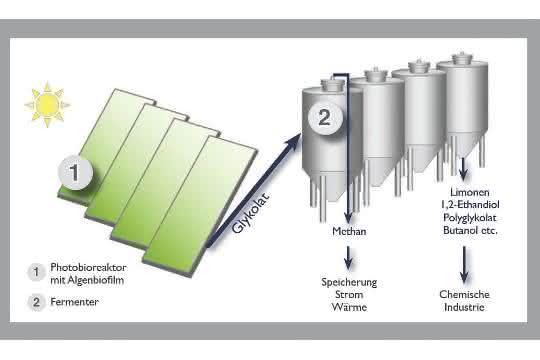 Zukünftiges Design der Neuen Grünen Chemie.