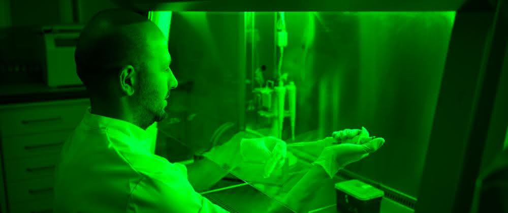 Der Einsatz von Licht spielt bei den Forschenden eine wichtige Rolle.