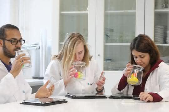 Das Sensorikpanel im Fraunhofer IVV: Das Wissenschaftler-Team beschreibt und bewertet die Gerüche von Spielwaren.
