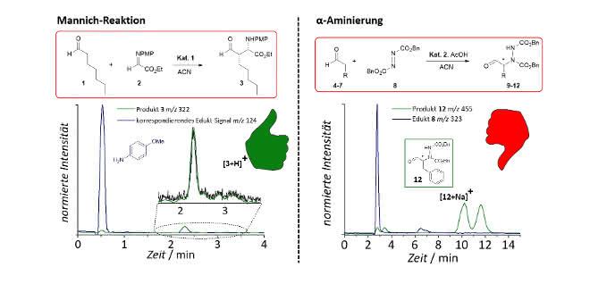 Bild 3: Links: Die getestete Mannichreaktion weist wie gewünscht nur ein überwiegendes Produktsignal auf. Rechts: Nach der Reaktion liegt das Produkt der α-Aminierung als Racemat (Enantiomere zu gleichen Teilen) vor.