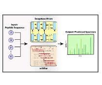 DeepMass:Prism, ein Deep-Learning-Ansatz mit bidirektionaler, rekurrenter neuronaler Netzwerkarchitektur (RNN) zur Vorhersage von Fragmentintensitäten.