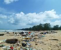 Immer mehr Plastikmüll sammelt sich in unseren Meeren an. Unter anderem eine Gefahr für Meerestiere.