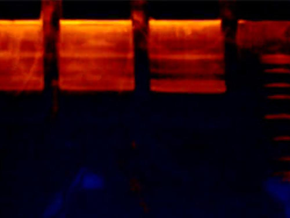 Isolierte Nukleinsäuren werden in einem Gel entsprechend ihrer Größe aufgetrennt und durch Chemikalien und UV-Licht sichtbar gemacht.