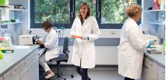 Technische Assistentin Meike Stotz-Reimers, Professorin Ulrike Nuber und technische Assistentin Dipl. Biol. Michaela Becker-Röck (v.li.n.re.).