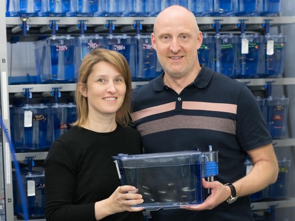 Prof. Melanie Philipp und PD Dr. Martin Burkhalter nutzen für ihre Forschung unter anderem Zebrafische
