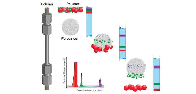 Graphische Darstellung zum Trennungsmechanismus bei der GPC-Analyse.