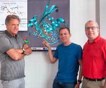 Klaus Gerwert, Till Rudack und Carsten Kötting (von links) forschen schon seit Jahren an Schalterproteinen, zu denen auch das hier gezeigte Ras-Protein gehört.