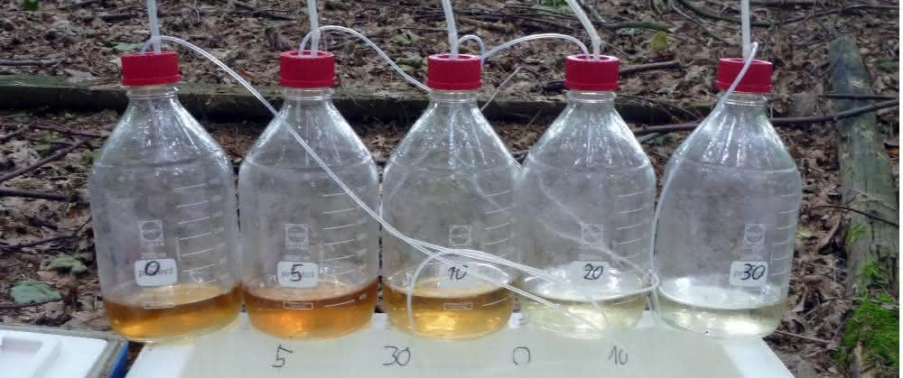 Molekulare Veränderungen des Bodenwassers mit der Tiefe können schon mit dem bloßen Auge sichtbar sein.