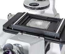 Probentisch für Mikroskop