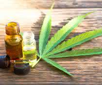 Cannabinoide extrahieren: CPC trifft CBD