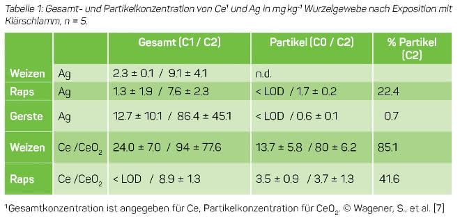 Tabelle 1: Gesamt- und Partikelkonzentration von Ce1 und Ag in mgkg-1 Wurzelgewebe nach Exposition mit Klärschlamm, n = 5.